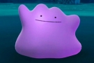 Ditto art